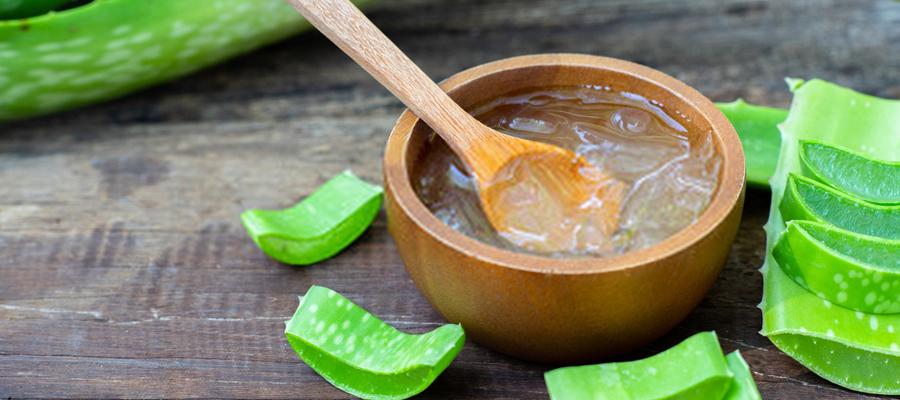 L'Aloe Vera : propriétés, bienfaits et posologie
